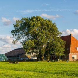 Duurzaam Westfriesland landschap